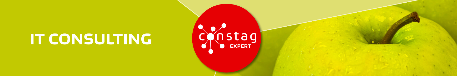 Constag Produkte IT Consulting EXPERT