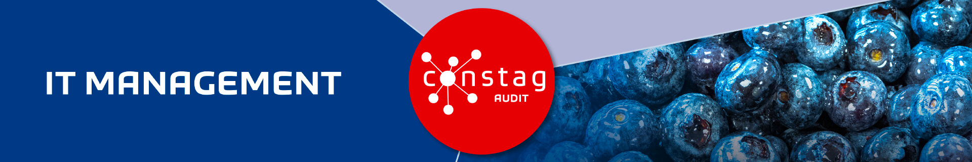 Constag Produkte IT-Management AUDIT