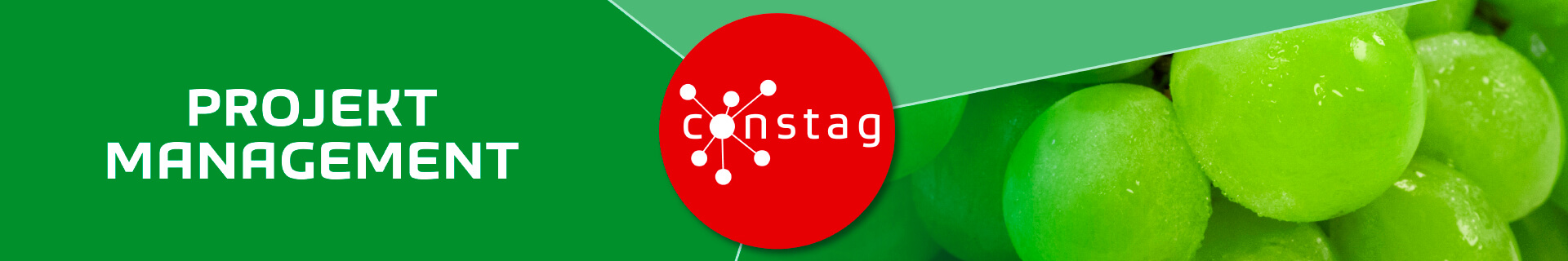 Constag Produkte Projekt Management Neutral